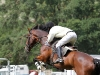 ben-simpson-sport-showjumping-ai0e3300