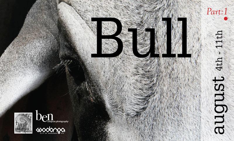 Bull Exhibition Invite